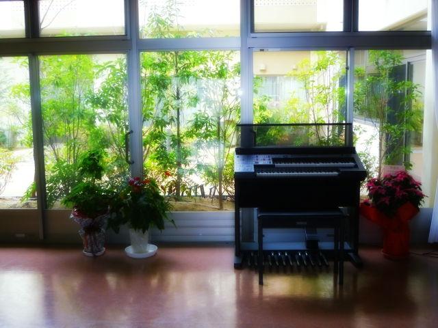 piano0.JPG